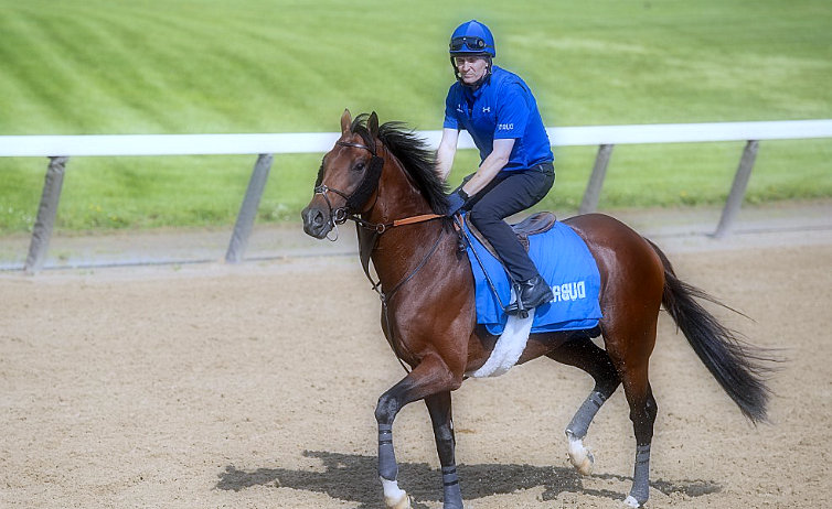 Billionaire Thunder Snow seeks to earn the respect of Americans in Met Mile