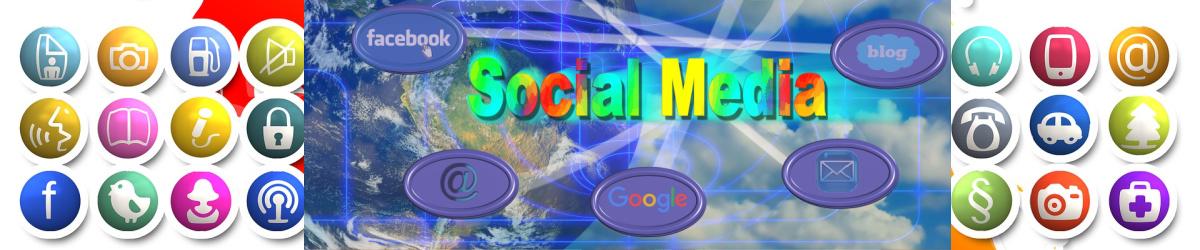 THE SOCIAL MEDIA INFLUENCER