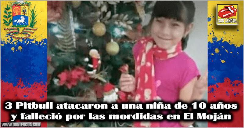 3 Pitbull atacaron a una niña de 10 años y falleció por las mordidas en El Moján