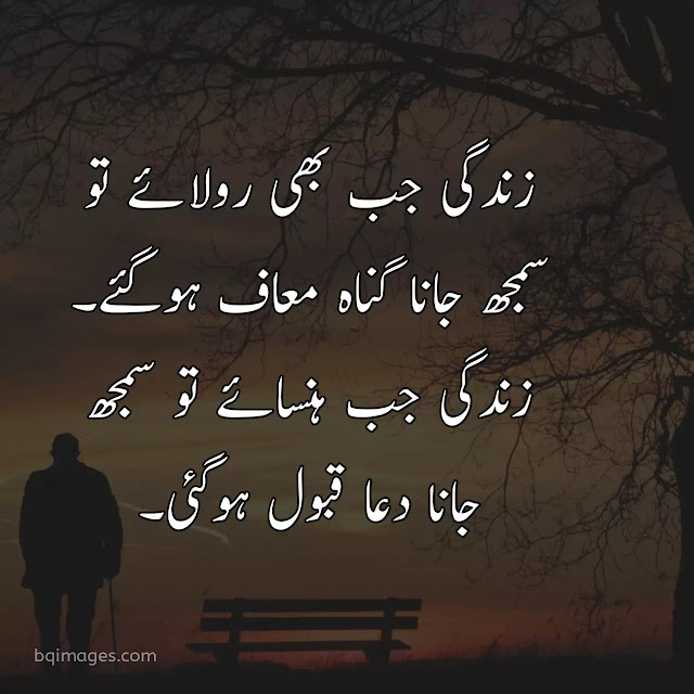 best quotes about life in urdu images