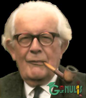 Teori Belajar Piaget dalam Pembelajaran IPA SD - www.gurnulis.id