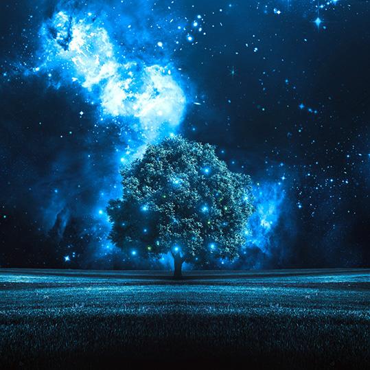 Tree Starry Night Wallpaper Engine