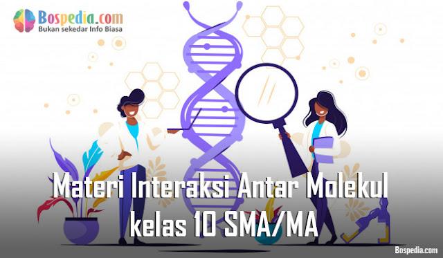 Materi Interaksi Antar Molekul kelas 10 SMA/MA