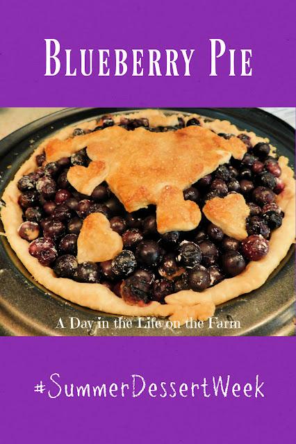 Blueberry pie pin