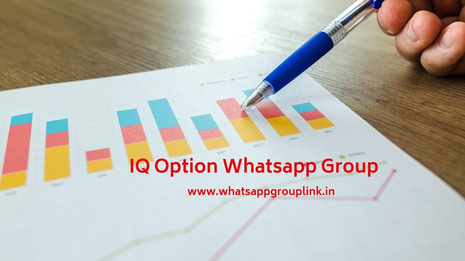 Whatsapp Group Link: IQ Option Whatsapp Group