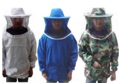 Αν βάψουμε άσπρη την κυψέλη μας: Τι χρώμα θα την βλέπουν οι μέλισσες μας;