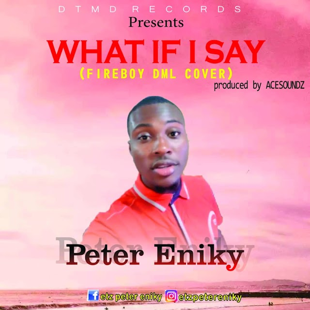 MUSIC: What If I Say (Fireboy DML Cover) - Peter Eniky