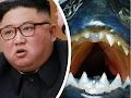 Kim Jong-un mengeksekusi Jendral Korea Utara dengan cara melempar kedalam tangki  berisi Ikan Piranha