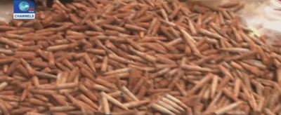 Photos: Police uncovers cache of bullets buried underground in a community in Anambra