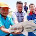 Dilarang tangkap ikan tamalian hingga April 2020 - DOF