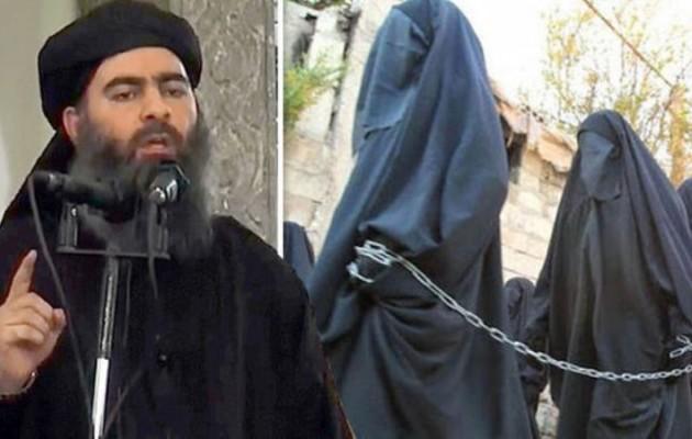 Αποτέλεσμα εικόνας για ισλαμοπιθηκοι καταρ