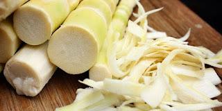 9 Manfaat Rebung, Si Tunas Bambu yang Lezat Dijadikan Sayur