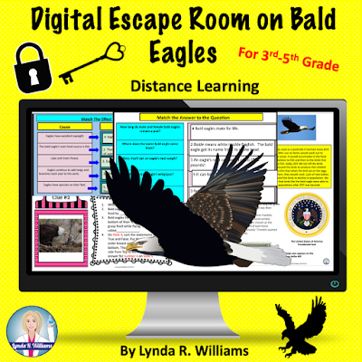Digital Escape Room on Bald Eagles