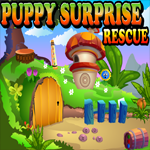Games4King Puppy Surprise…