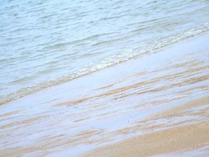 053 #海 #砂浜 #風景 #夏