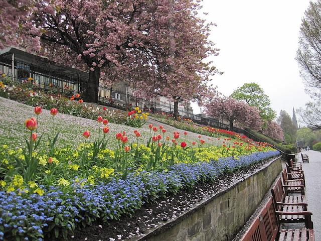 Что посмотреть в Эдинбурге бесплатно: Принсиз Стрит