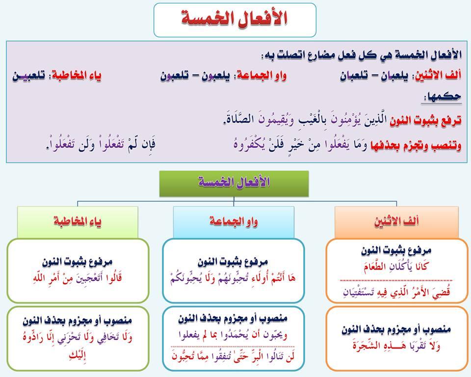 بالصور قواعد اللغة العربية للمبتدئين , تعليم قواعد اللغة العربية , شرح مختصر في قواعد اللغة العربية 40.jpg