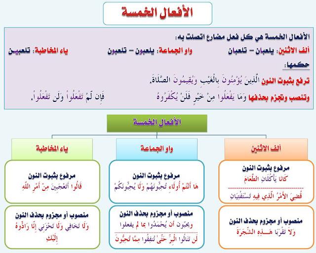 """انفراد.... كل قواعد اللغة العربية لطلاب """"ابتدائي - اعدادي - ثانوي"""" في صورة لوحات مبسطة مع الشرح والتدريبات 40"""