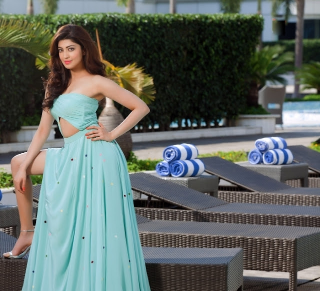 Actress Pranitha Subhash Latest Photoshoot Stills Shows Off Her Sexy Legs and Cleavage