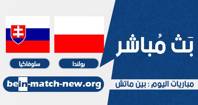 بولندا وسلوفاكيا