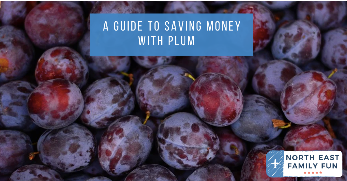 A Guide to Saving Money with Plum