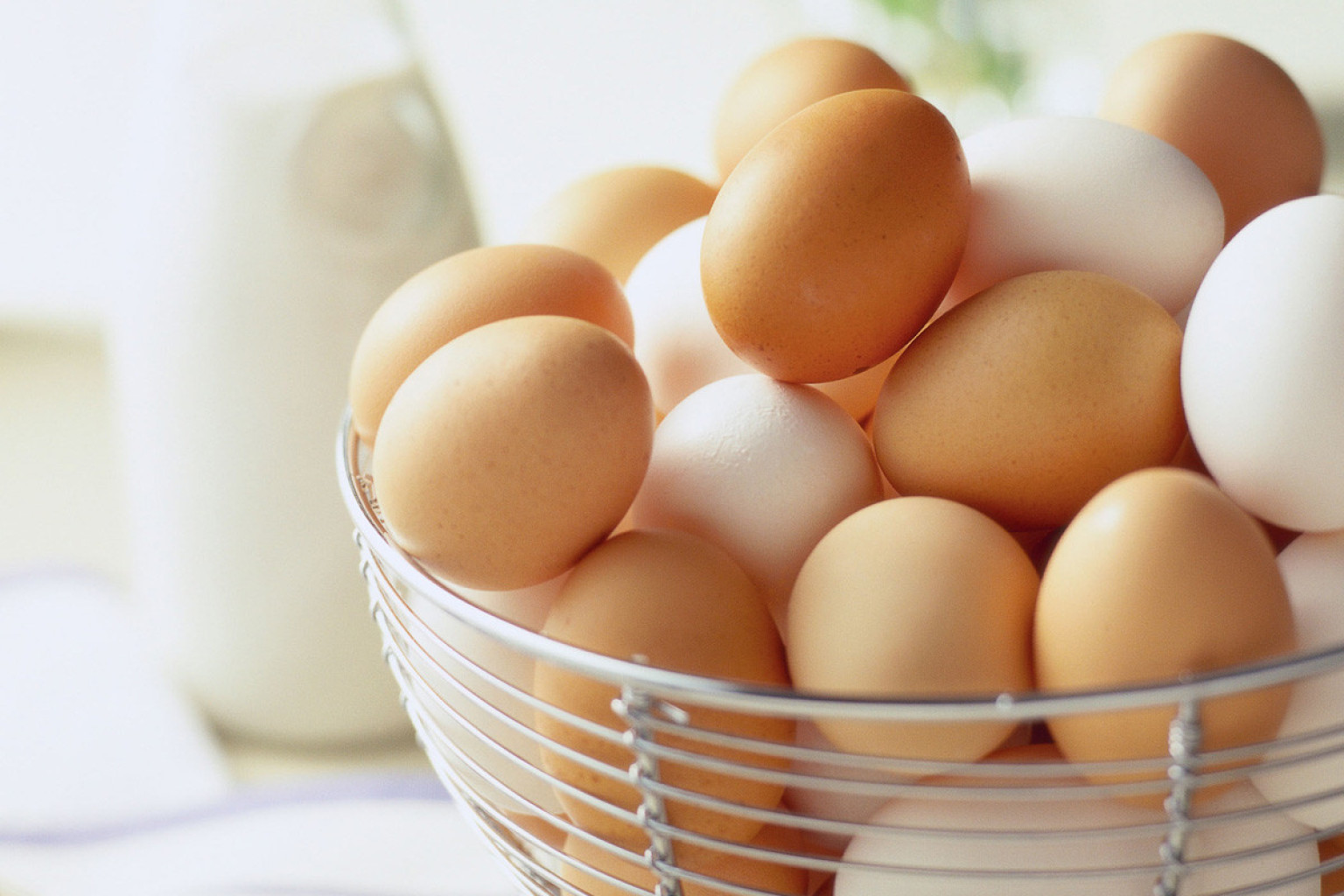 Brown and white eggs for health benefits