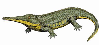 prehistoric amphibia