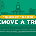 7 Reasons Why You Should Remove a Tree #infographic