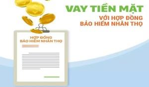Vay Tiền Mặt Bằng Bảo Hiểm Nhân Thọ Lên Tới 100 Triệu