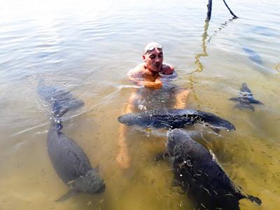 Nadando com os peixes na lagoa