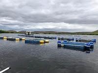 Bahia Pesca em Itaetê
