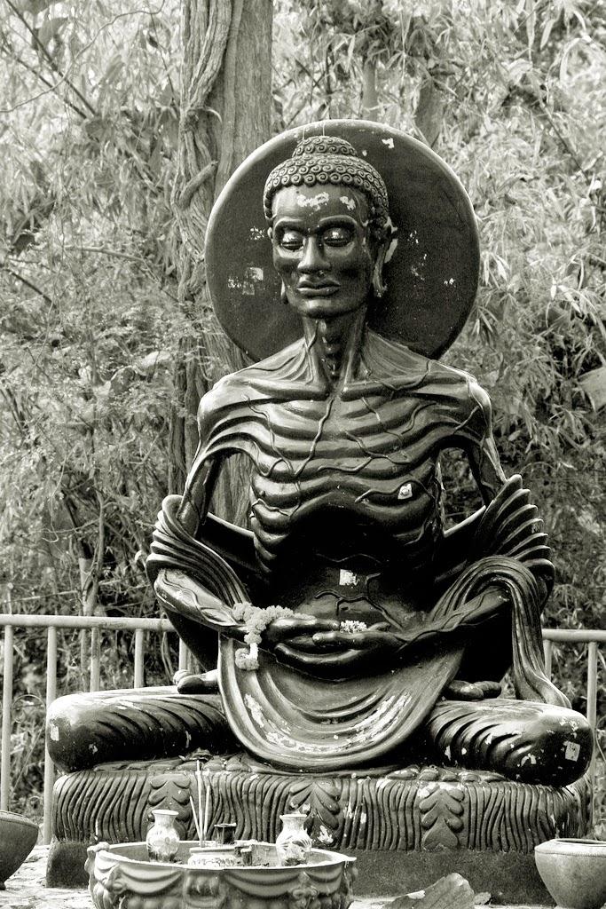 Vida y enseñanza de Buda
