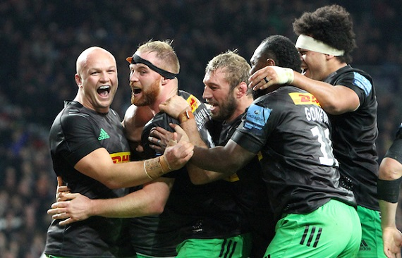 Harlequins players celebrate try