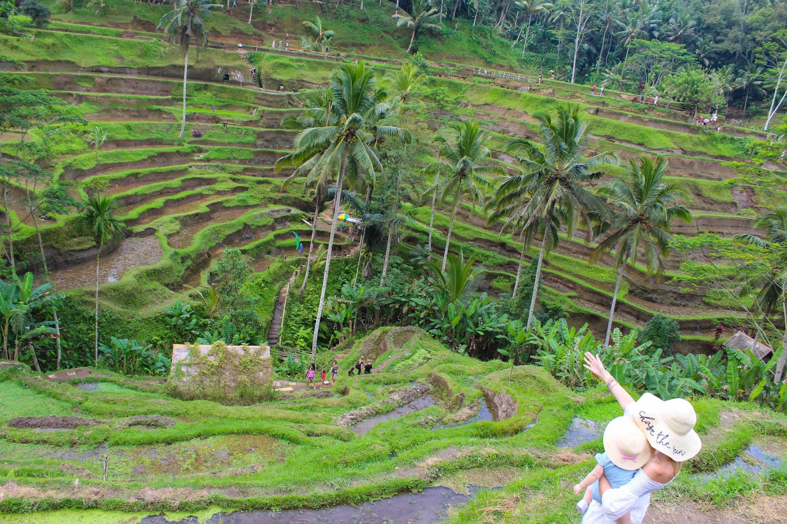 Where To Take Young Children When In Bali - Where is bali located