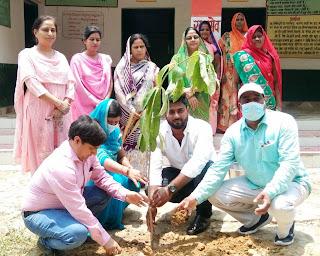 हमारे भविष्य को सुरक्षित करते हैं वृक्षः सुषमा | #NayaSaberaNetwork