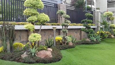 Tukang Taman Surabaya Murah