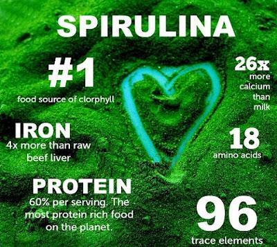 Tảo mặt trời spirulina tăng cân chứa dưỡng chất nào?