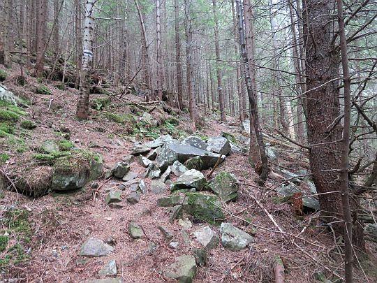Kamienie na szlaku.