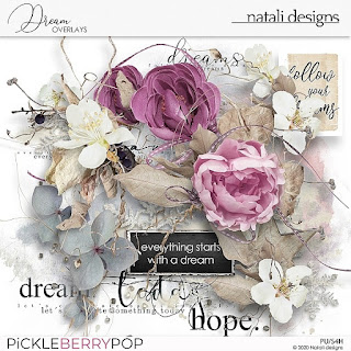 https://pickleberrypop.com/shop/Dream-Overlays.html