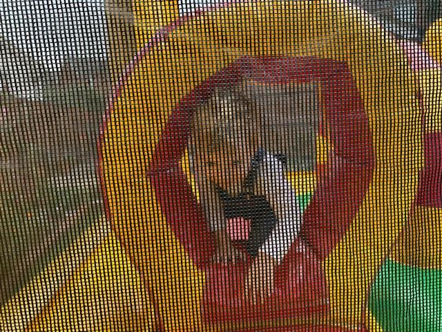 Little boy on bouncy castle