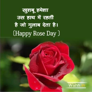 Short Rose Day Messages & Quotes In Hindi