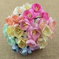 http://www.scrapkowo.pl/shop,kwiaty-wisni-dwutonowe-jasnowrozowe-5-szt-,4820.html