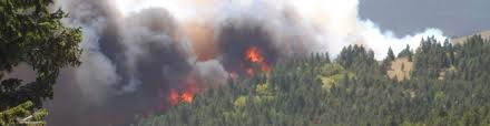 Foothills Drought Conditions, Fire Mitigation and Plant Materials
