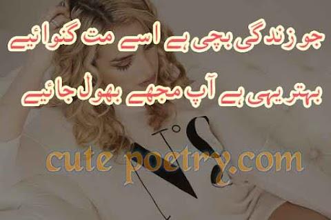 Sad Poetry and Urdu Poetry, Sad Poems