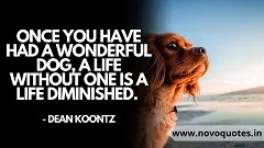Quotes about Sentimental Dog