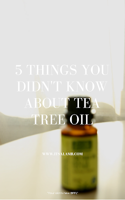 5 Things You Didn't Know About Tea Tree Oil | Read it on www.itsalamb.com #skincare #essentialoils #naturalremedy #teatreeoil