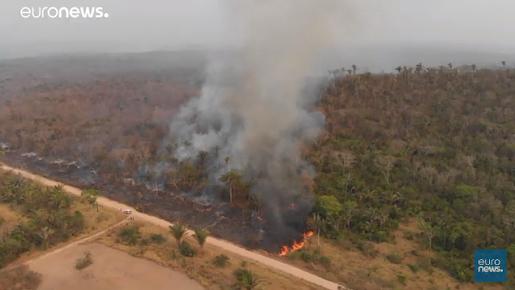 👀🌲 Indígenas pedem ajuda internacional para proteger Amazônia  (euronews (em português)) Veja meu comentário contra esta campanha Europeia para difamar o Brasil