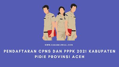 Pendaftaran CPNS dan PPPK Kabupaten Pidie Provinsi Aceh Lulusan SMA D3 S1 S2