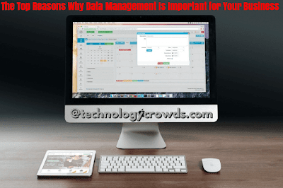 The Top Reasons Why Data Management Is Important for Your Business