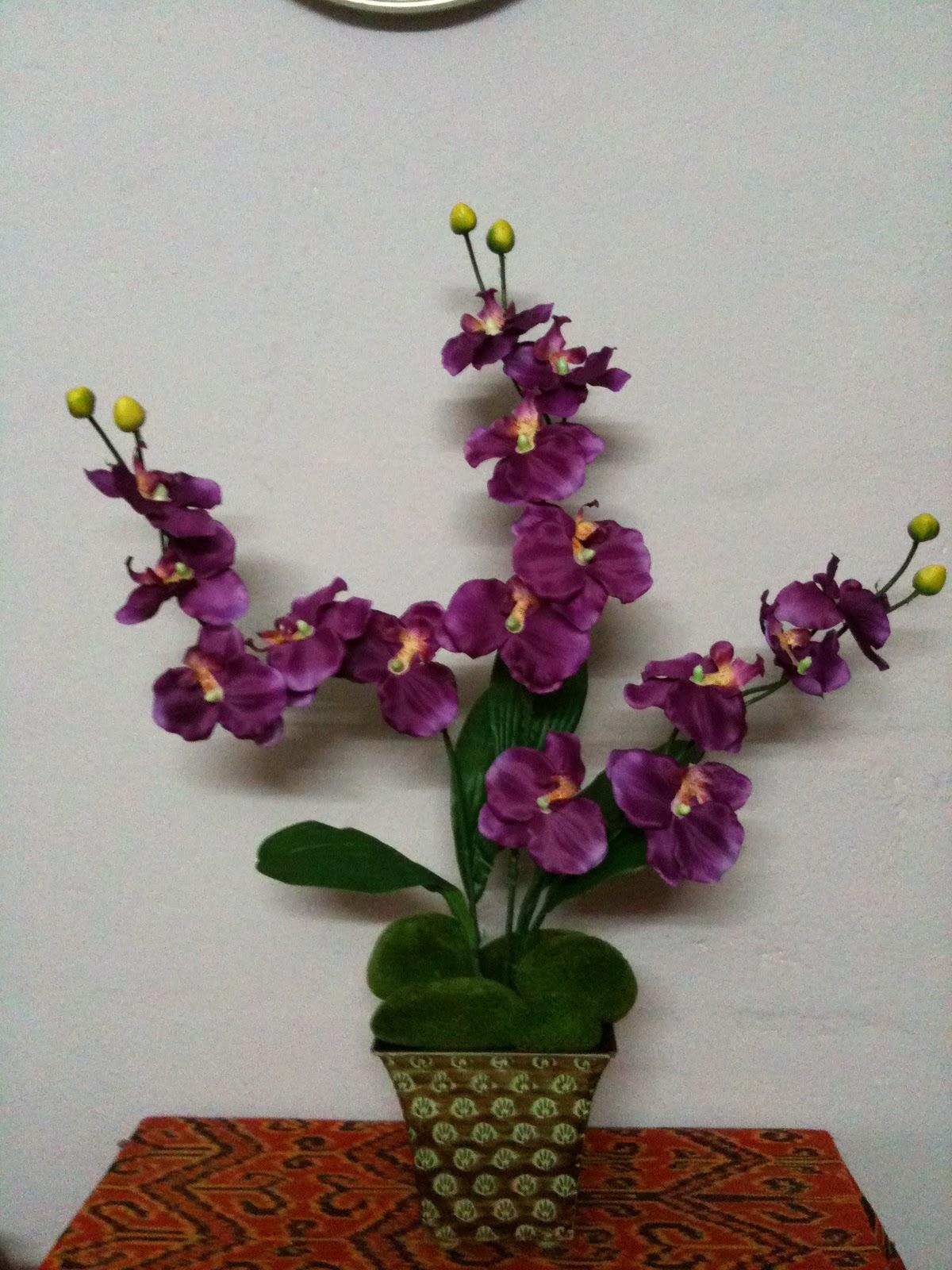 bungamirablogspot Orkid